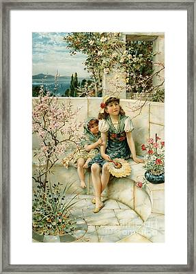 Butterflies Framed Print by William Stephen Coleman