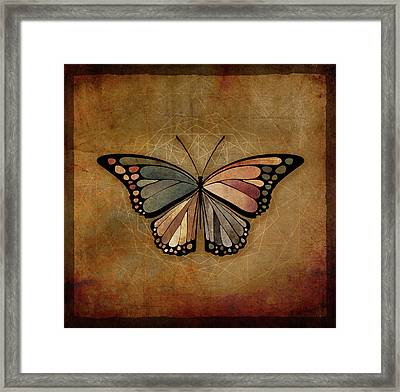 Butterfly 1a Framed Print