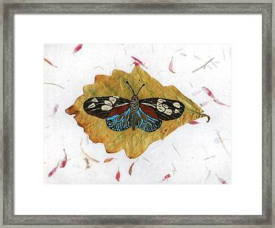 Butterfly #2 Framed Print