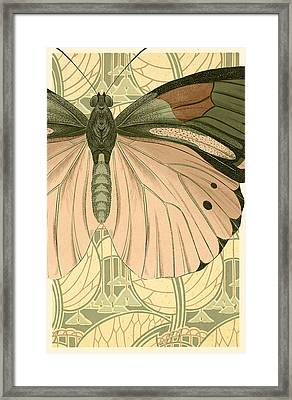Butterfly 2 Framed Print by Robert Todd