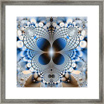 Butterfly 3 Framed Print by Sfinga Sfinga