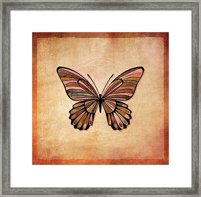 Butterfly 7a Framed Print