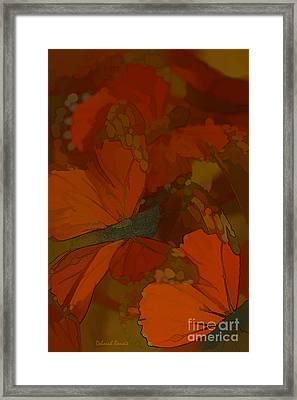 Butterfly Abstract Framed Print by Deborah Benoit