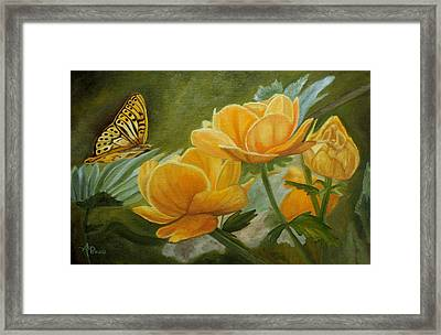 Butterfly Among Yellow Flowers Framed Print