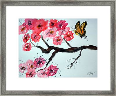 Butterfly And Blossoms Framed Print