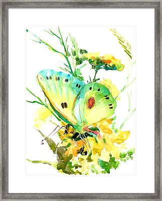 Butterfly And Flowers Framed Print by Suren Nersisyan