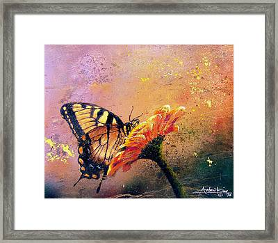 Butterfly Framed Print by Andrew King
