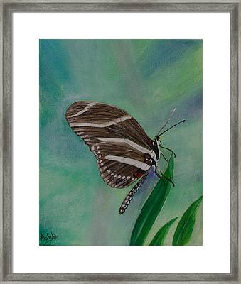 Butterfly Framed Print by Arohika Verma