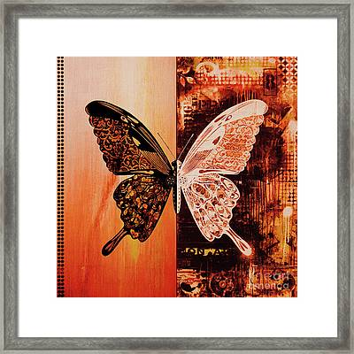 Butterfly Art 88u Framed Print by Gull G