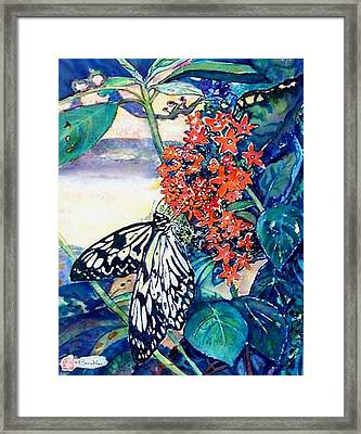 Butterfly At Mac Framed Print by Norma Boeckler