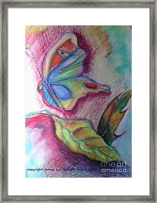 Butterfly Beauty Framed Print by Jamey Balester