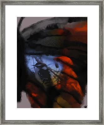 Butterfly Birds Collection  Framed Print by Debra     Vatalaro
