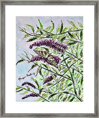 Butterfly Bush Framed Print