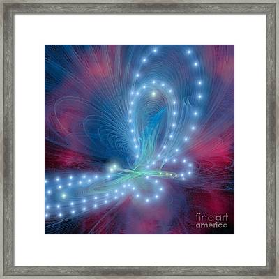 Butterfly Framed Print by Corey Ford