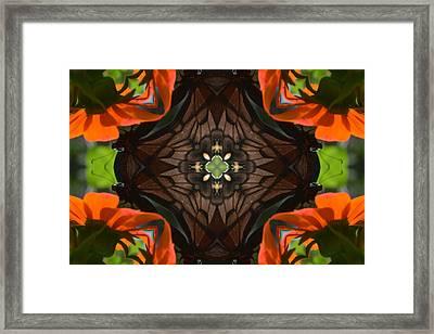 Butterfly Corner Framed Print by Chad Wasden