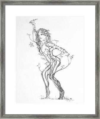 Butterfly Dancer Framed Print by Mark Johnson