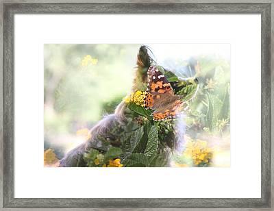 Butterfly Dog Framed Print