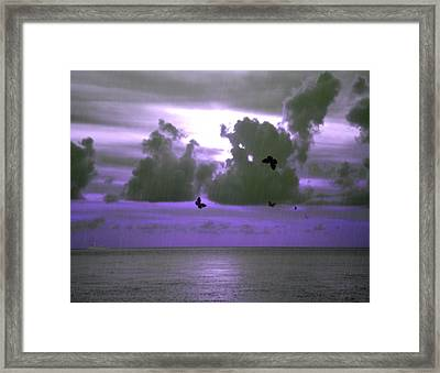 Butterfly Dreams And A Purple Sky Framed Print