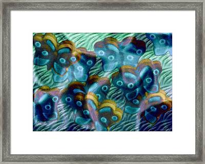 Butterfly Dreams II Framed Print