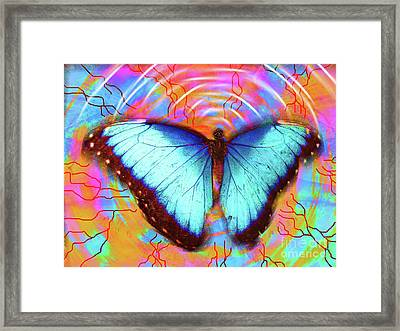 Butterfly Dreams Framed Print by Robert Ball
