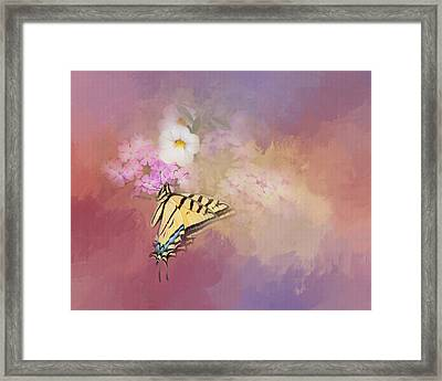 Butterfly Dreams Framed Print by Theresa Tahara