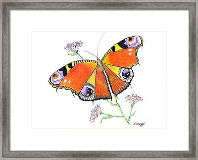 Butterfly Dressed For A Masquerade Ball Framed Print