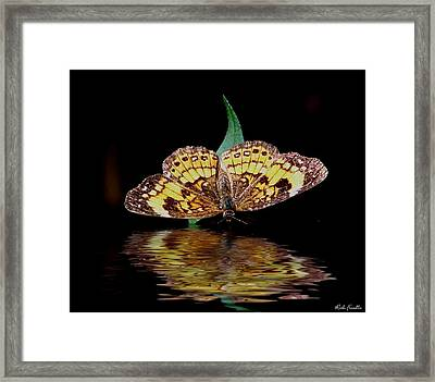 Framed Print featuring the photograph Butterfly Drink by Rick Friedle