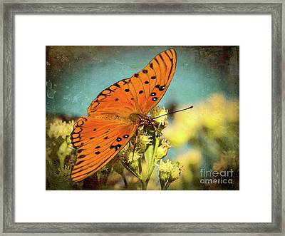 Butterfly Enjoying The Nectar Framed Print