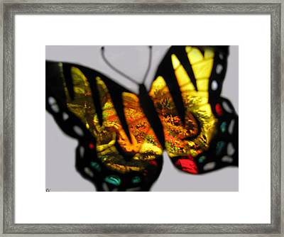 Butterfly Floral Collection  Framed Print by Debra     Vatalaro