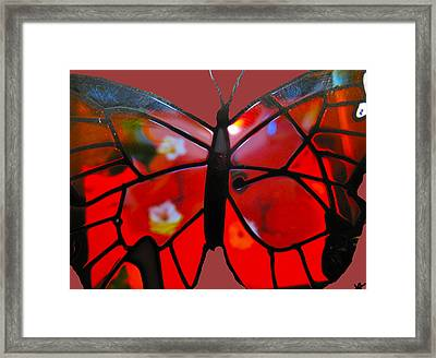 Butterfly Florals  Collection B Framed Print by Debra     Vatalaro