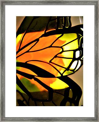 Butterfly Florals  Collection C Framed Print by Debra     Vatalaro