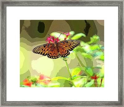 Butterfly Flutter By Framed Print