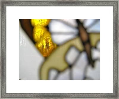 Butterfly Forest  B Framed Print by Debra     Vatalaro
