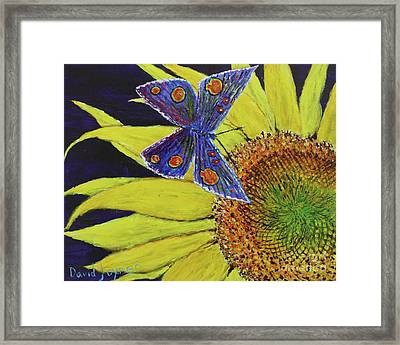 Butterfly Haven Framed Print