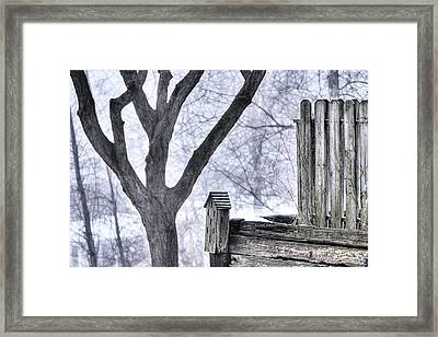 Butterfly House In Winter Framed Print