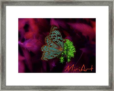 Framed Print featuring the photograph Butterfly In Fusia by Miriam Shaw