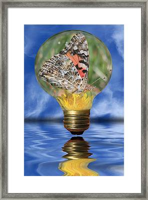Butterfly In Lightbulb Framed Print by Shane Bechler
