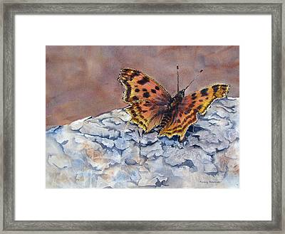 Butterfly-in-the-old-growth-forest Framed Print by Nancy Newman