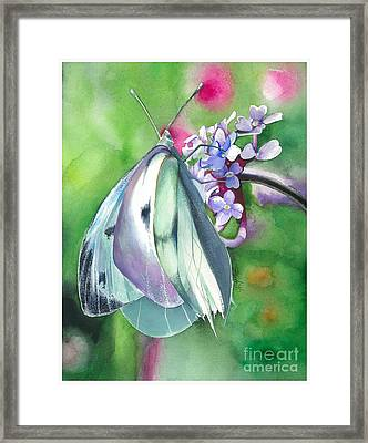 Butterfly Kisses Framed Print by Maya Marcotte