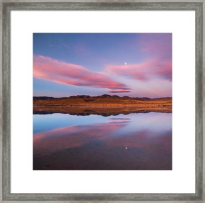 Butterfly Moon Framed Print by Darren  White