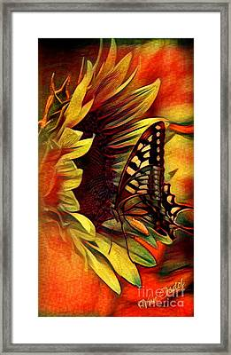 Butterfly On Sunflower - Setting Sun Abstract Framed Print