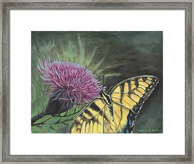 Butterfly On Thistle 2010 Framed Print by Cheryl Johnson
