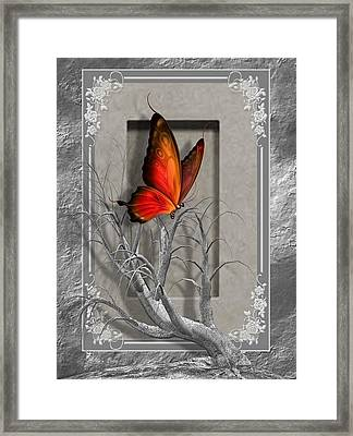 Butterfly Pop Framed Print