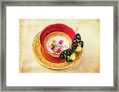 Butterfly Resting On Tea Cup Framed Print