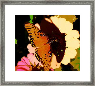Butterfly Shadows Framed Print by Dottie Dees