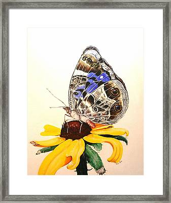 Framed Print featuring the painting Butterfly Sun by Mike Ivey