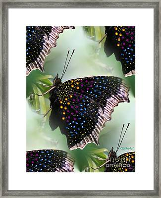 Butterfly Sunbath #2 Framed Print