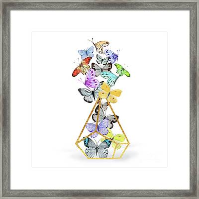 Butterfly Terrarium, Butterflies And A Gold Wire Terrarium Framed Print by Tina Lavoie