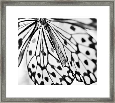 Butterfly Wings - Black And White Framed Print