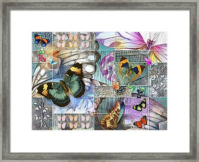 Butterfly Wings Collage Framed Print